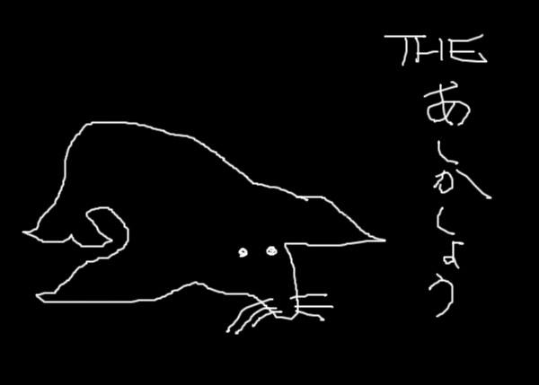 IMG_000306.jpg