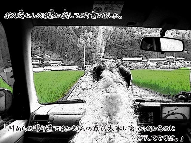 ボルゾイとお付きの超田舎的物語 5