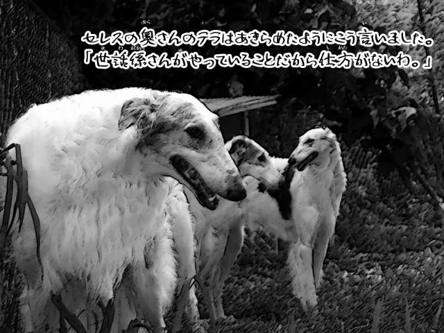 ボルゾイとお付きの超田舎的物語 6
