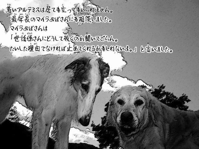 ボルゾイとお付きの超田舎的物語 7