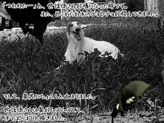 ボルゾイとお付きの超田舎的物語 24