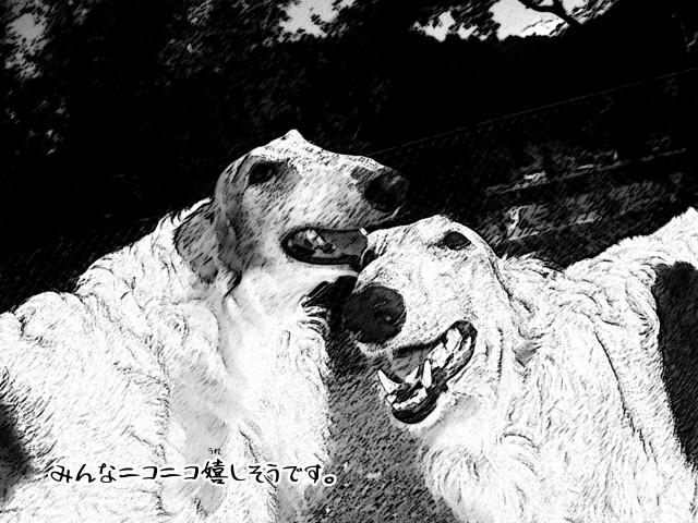 ボルゾイとお付きの超田舎的物語 27