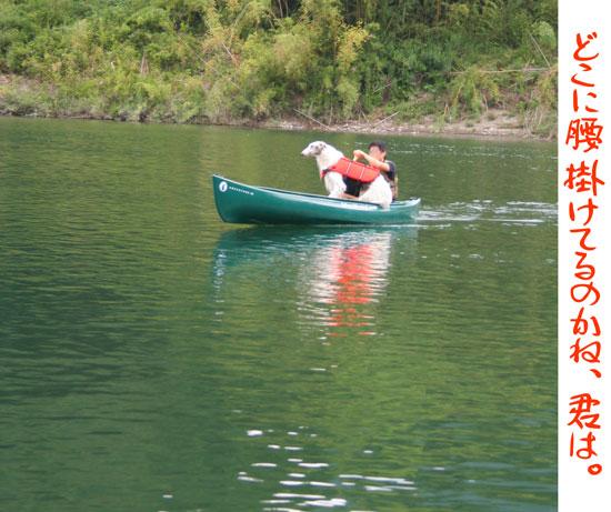 ボルゾイの正しくないカヌーの乗り方