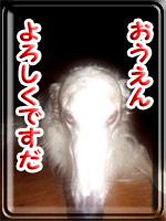 ban20100401.jpg