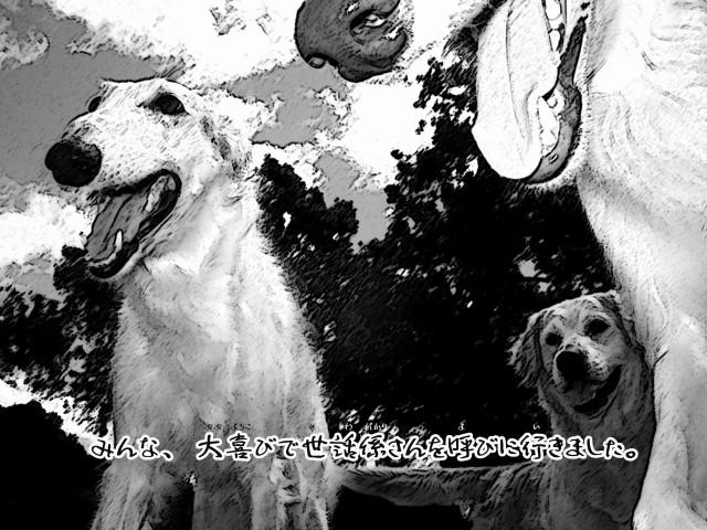 ボルゾイとお付きの超田舎的物語 13